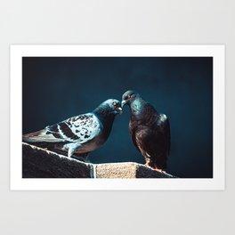 Pigeon Kiss. Just A Peck. Photograph Art Print