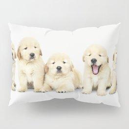 Portrait Of Golden Retriever Puppies Pillow Sham