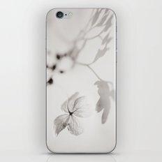 Hortensia iPhone & iPod Skin