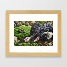 Uprooted (part 3) Framed Art Print