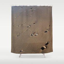 Oceanic pebble 1 Shower Curtain