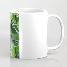 Blue-winged Warbler Mug