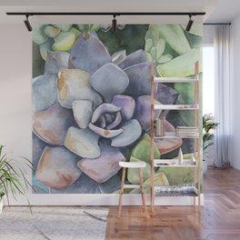 dawnsing succulents Wall Mural