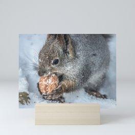 Magic Nutcracker Mini Art Print