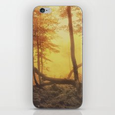 Mystical Forest iPhone & iPod Skin