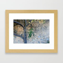 Painted gunge wall and tree Framed Art Print