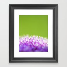 Pompoms Framed Art Print
