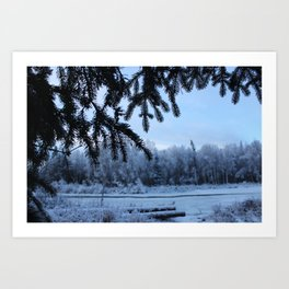 Through the Spruce Art Print