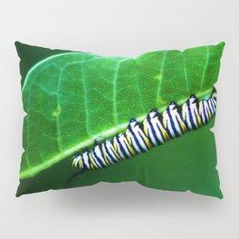Monarch Caterpillar Pillow Sham