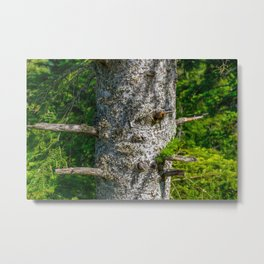 Tree Trunk with short thick Branch Stumps Metal Print