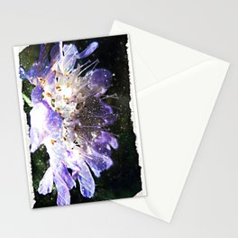 Alluring Stationery Cards