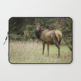 Female Wapiti Laptop Sleeve