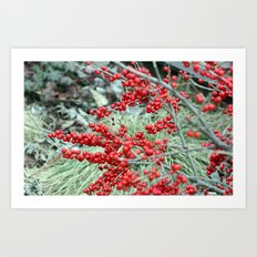 Green and Red Art Print