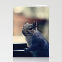 squirrel Stationery Cards featuring Squirrel  by Anne Staub