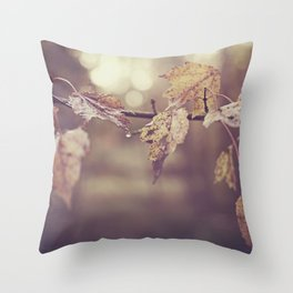Fall leaves in the morning sun Throw Pillow