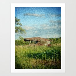 Once A Barn Art Print