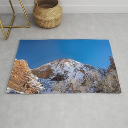 Zion Winter - 4536 Big_Bend_Viewpoint Rug