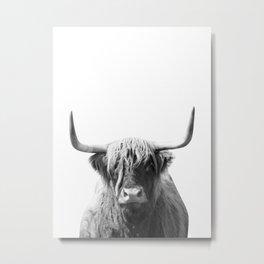 Highland cow | Black and White Photo Metal Print