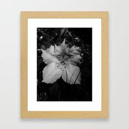 La petite fleur grise Framed Art Print