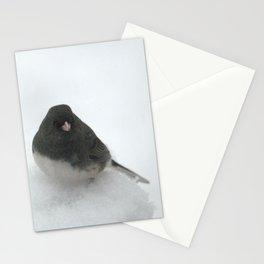 Snow Bird (Dark-eyed Junco) Stationery Cards