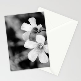 Floral black and white Stationery Cards