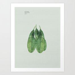 Banana, Leaf, Art Print, Botanical Decor Art Print