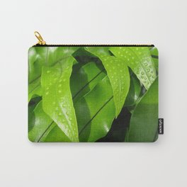 From the Conservatory #42 Carry-All Pouch