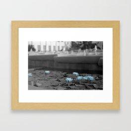 Lily Pad Blues Framed Art Print