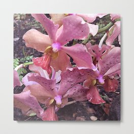 Pink Hawaiian Tropical Flowers Metal Print
