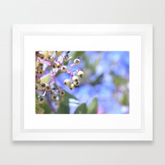 Frost Framed Art Print
