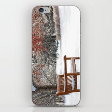 Winter Bench and Crabapple Tree iPhone & iPod Skin