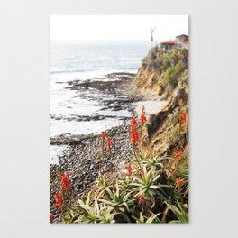 Laguna Beach being Beautiful Canvas Print