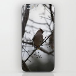 Blurr iPhone Skin