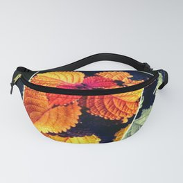 Singled Out Fanny Pack