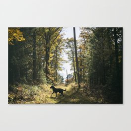 A Walk with Charlie Canvas Print