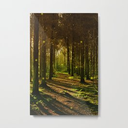 Firefly Forest Metal Print