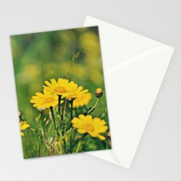 Field of Crown Daisies Stationery Cards