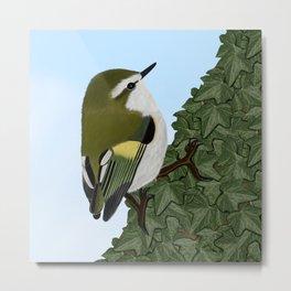 jz.birds Rifleman Bird Animal Metal Print