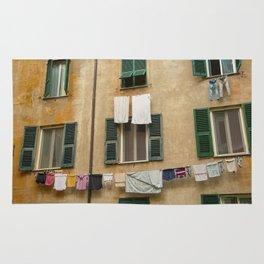Hanging laundry Rug