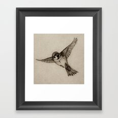 Aviation Framed Art Print