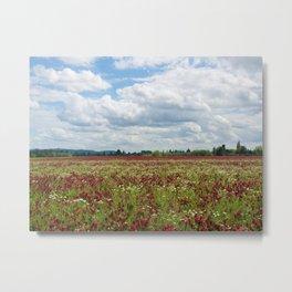 Fields of Crimson Clover Metal Print
