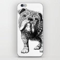 English Bulldog iPhone & iPod Skin