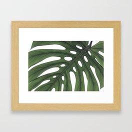 Minimal Monstera Leaf Framed Art Print