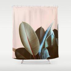 Ficus Elastica #1 Shower Curtain