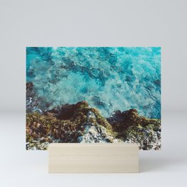 Blue Coast Mini Art Print
