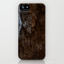 Kings Canyon Tree iPhone Case