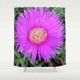 Iceplant Shower Curtain