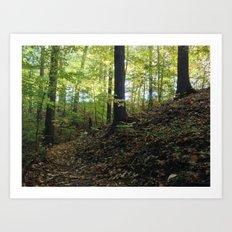 FALL TRAIL SUNRISE (Crescent Trail, Fairport, NY) Art Print