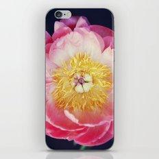 Peony Magic iPhone & iPod Skin