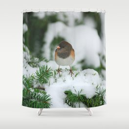 Junco In The Snow... Shower Curtain